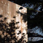 asamueldelmas-maison-quinconce_thibaut-voisin-10